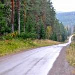 Grusvägen Brattfors-Horndal